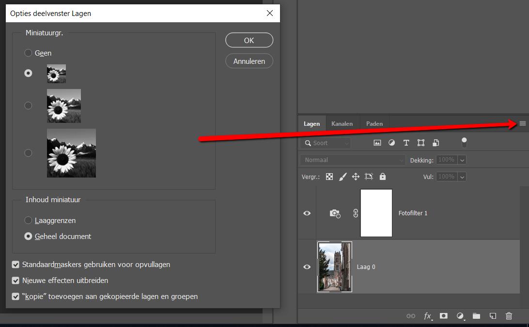 Adobe Photoshop Optimaliseren - Deelvensteropties