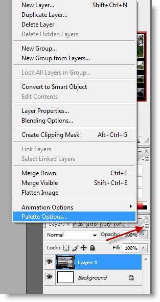 Adobe Photoshop Optimaliseren - Palette - Options