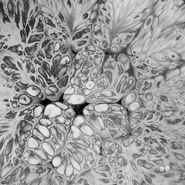 Workshop Strobist Fotografie Sinaasappel Flitser