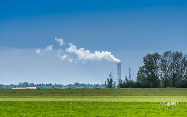 Woordloze Woensdag Biesbosch Werkendam Amercentrale Groen Blauw/></noscript> <span class=