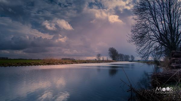 Woordloze Woensdag Magisch Licht Landschap Biesbosch Water