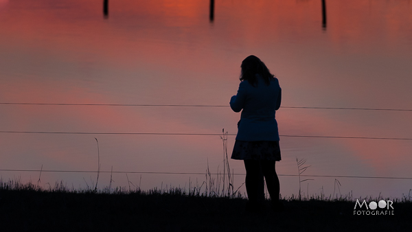 Woordloze Woensdag Silhouet Landschap Zonsondergang Biesbosch