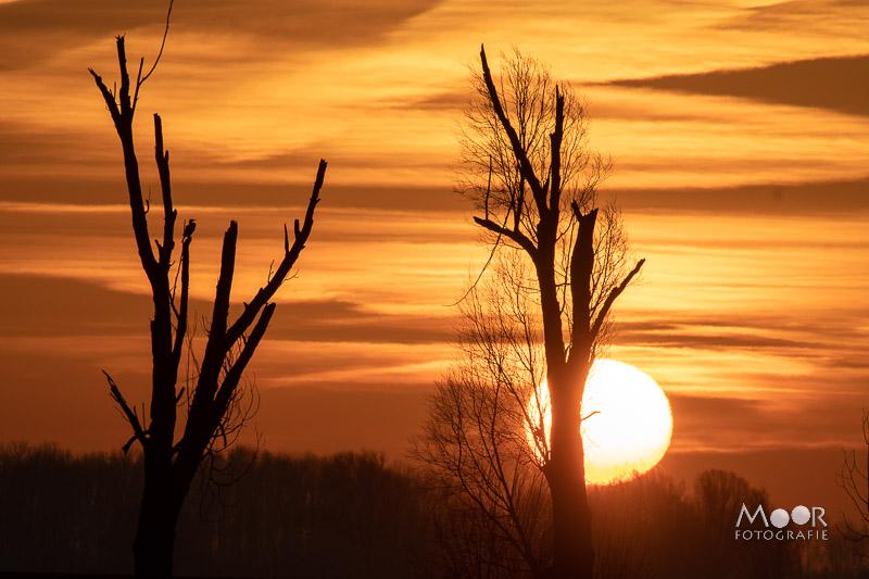 Woordloze Woensdag Zonsondergang