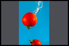 Resultaten Wil Molenkamp Workshop Strobist Fotografie