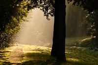 licht-belangrijker-dan-locatie